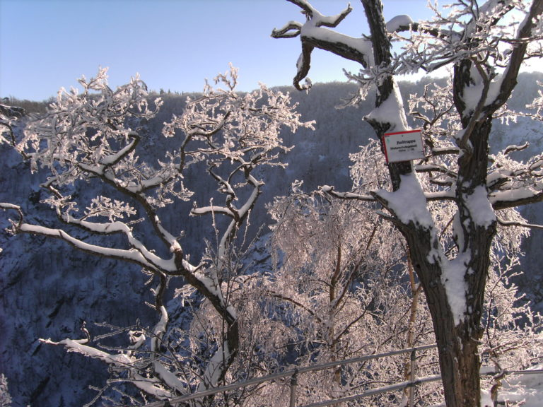 Schneebild mit Aussicht
