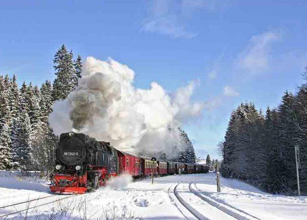 Schmalspurbahn im verschneiten Wald