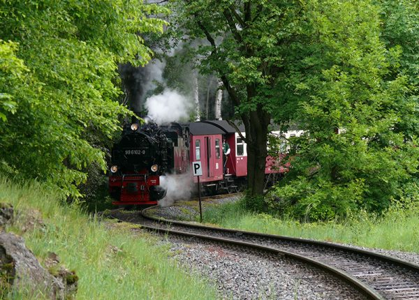 Schmalspurbahn im Laubwald